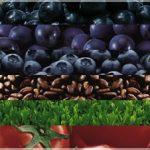 グラヴィノールの健康食品としての効果と副作用!成分についても