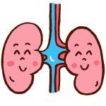 糖尿病性腎症の病期の分類と原因やメカニズム!症状や治療法も!